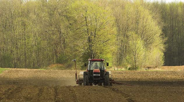 Tractor planting field